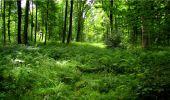 Randonnée Marche LONGPONT - en forêt de Retz_18_Longpont_etangs de la Ramee_AR - Photo 62