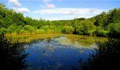 Randonnée Marche LONGPONT - en forêt de Retz_18_Longpont_etangs de la Ramee_AR - Photo 36
