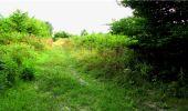Randonnée Marche LONGPONT - en forêt de Retz_18_Longpont_etangs de la Ramee_AR - Photo 8