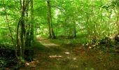 Randonnée Marche LONGPONT - en forêt de Retz_18_Longpont_etangs de la Ramee_AR - Photo 76