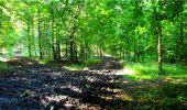 Randonnée Marche LONGPONT - en forêt de Retz_18_Longpont_etangs de la Ramee_AR - Photo 26