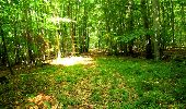 Randonnée Marche LONGPONT - en forêt de Retz_18_Longpont_etangs de la Ramee_AR - Photo 46