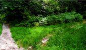 Randonnée Marche LONGPONT - en forêt de Retz_18_Longpont_etangs de la Ramee_AR - Photo 65