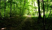 Randonnée Marche LONGPONT - en forêt de Retz_18_Longpont_etangs de la Ramee_AR - Photo 77
