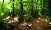 Randonnée Marche LONGPONT - en forêt de Retz_18_Longpont_etangs de la Ramee_AR - Photo 81