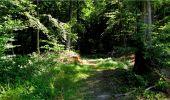 Trail Walk LONGPONT - en forêt de Retz_19_Longpont_carrefour de Vauvaudran_AR - Photo 11