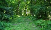 Trail Walk LONGPONT - en forêt de Retz_19_Longpont_carrefour de Vauvaudran_AR - Photo 52