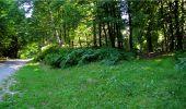 Trail Walk LONGPONT - en forêt de Retz_19_Longpont_carrefour de Vauvaudran_AR - Photo 27
