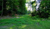 Trail Walk LONGPONT - en forêt de Retz_19_Longpont_carrefour de Vauvaudran_AR - Photo 60