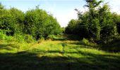 Trail Walk LONGPONT - en forêt de Retz_19_Longpont_carrefour de Vauvaudran_AR - Photo 62