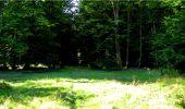 Trail Walk LONGPONT - en forêt de Retz_19_Longpont_carrefour de Vauvaudran_AR - Photo 63