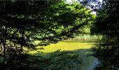 Trail Walk LONGPONT - en forêt de Retz_19_Longpont_carrefour de Vauvaudran_AR - Photo 35
