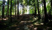 Trail Walk LONGPONT - en forêt de Retz_19_Longpont_carrefour de Vauvaudran_AR - Photo 24
