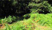 Trail Walk LONGPONT - en forêt de Retz_19_Longpont_carrefour de Vauvaudran_AR - Photo 49