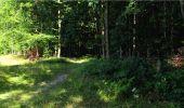 Trail Walk LONGPONT - en forêt de Retz_19_Longpont_carrefour de Vauvaudran_AR - Photo 12