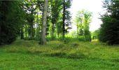 Trail Walk LONGPONT - en forêt de Retz_19_Longpont_carrefour de Vauvaudran_AR - Photo 76