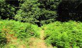 Trail Walk LONGPONT - en forêt de Retz_19_Longpont_carrefour de Vauvaudran_AR - Photo 48