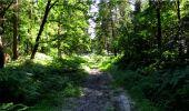 Trail Walk LONGPONT - en forêt de Retz_19_Longpont_carrefour de Vauvaudran_AR - Photo 14