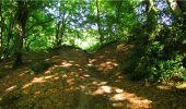 Trail Walk LONGPONT - en forêt de Retz_19_Longpont_carrefour de Vauvaudran_AR - Photo 45