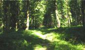 Trail Walk LONGPONT - en forêt de Retz_19_Longpont_carrefour de Vauvaudran_AR - Photo 44