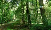 Trail Walk LONGPONT - en forêt de Retz_19_Longpont_carrefour de Vauvaudran_AR - Photo 41