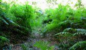 Trail Walk LONGPONT - en forêt de Retz_19_Longpont_carrefour de Vauvaudran_AR - Photo 46