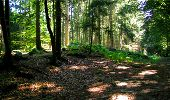 Trail Walk LONGPONT - en forêt de Retz_19_Longpont_carrefour de Vauvaudran_AR - Photo 26