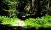 Trail Walk LONGPONT - en forêt de Retz_19_Longpont_carrefour de Vauvaudran_AR - Photo 15
