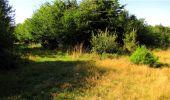 Trail Walk LONGPONT - en forêt de Retz_19_Longpont_carrefour de Vauvaudran_AR - Photo 2