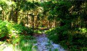 Trail Walk LONGPONT - en forêt de Retz_19_Longpont_carrefour de Vauvaudran_AR - Photo 19