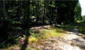 Trail Walk LONGPONT - en forêt de Retz_19_Longpont_carrefour de Vauvaudran_AR - Photo 10