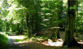 Trail Walk LONGPONT - en forêt de Retz_19_Longpont_carrefour de Vauvaudran_AR - Photo 16