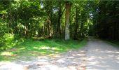 Trail Walk LONGPONT - en forêt de Retz_19_Longpont_carrefour de Vauvaudran_AR - Photo 39