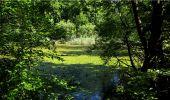 Trail Walk LONGPONT - en forêt de Retz_19_Longpont_carrefour de Vauvaudran_AR - Photo 36