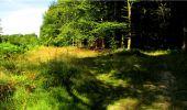 Trail Walk LONGPONT - en forêt de Retz_19_Longpont_carrefour de Vauvaudran_AR - Photo 13