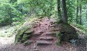 Randonnée Marche NEUWILLER-LES-SAVERNE - Neuwiller-lès-Saverne - Photo 10
