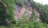 Randonnée Marche NEUWILLER-LES-SAVERNE - Neuwiller-lès-Saverne - Photo 4