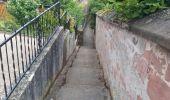Randonnée Marche NEUWILLER-LES-SAVERNE - Neuwiller-lès-Saverne - Photo 2
