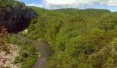 Randonnée Marche ROSIERES - Les balcons de la Baume - Rosières - Photo 6