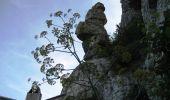 Randonnée Marche ROSIERES - Les balcons de la Baume - Rosières - Photo 2