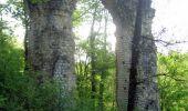 Randonnée V.T.T. LE DOUHET - Circuit des Arches de Fontcouverte - Photo 2