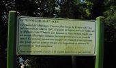 Randonnée Marche MAUVAGES - Un tour à Mauvages - Photo 1