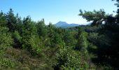 Randonnée Marche VOLVIC - Puy de Jume - Photo 2