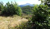 Randonnée Marche VOLVIC - Puy de Jume - Photo 1