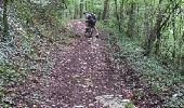 Trail Mountain bike CHAUFFOUR-SUR-VELL - Le bois de l'empire - Photo 2