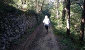Trail Walk MOUSSOULENS - Boucle de la Combe a la Biterelle  - Photo 11