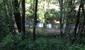 Trail Walk MOUSSOULENS - Boucle de la Combe a la Biterelle  - Photo 10