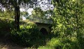Trail Walk MOUSSOULENS - Boucle de la Combe a la Biterelle  - Photo 7