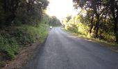 Trail Walk MOUSSOULENS - Boucle de la Combe a la Biterelle  - Photo 6