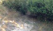 Trail Walk MOUSSOULENS - Boucle de la Combe a la Biterelle  - Photo 2